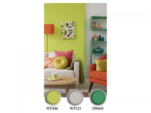 цветове-латекс-хол
