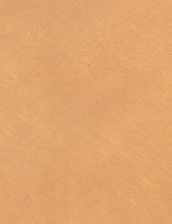 SABULADOR SOFT 431C A100